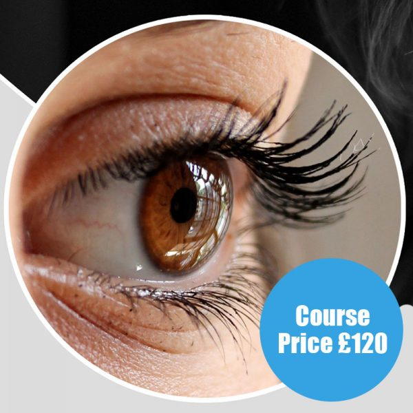 Lash Lift Course by EMD Beauty